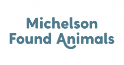 Michelson Found Animals